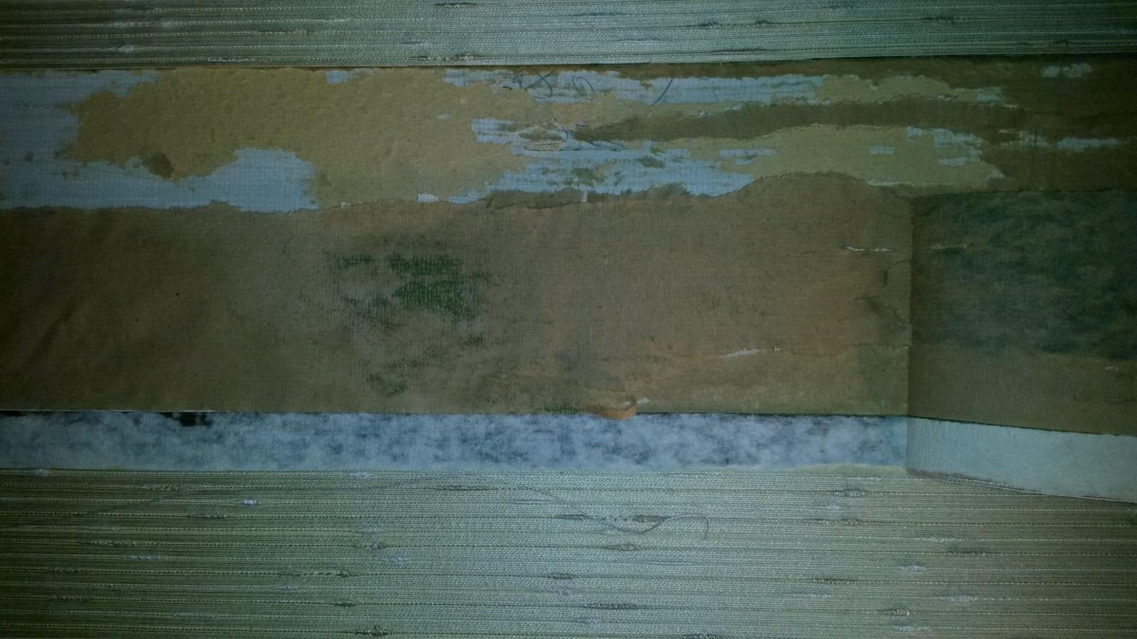 #385259 Mest effektive Male Væg Med Svamp: Inspiration Til Blå Vægge. Nyheder Lofter Og Vægge. Gør Det Selv Toning Af Maling 6205 16009006205